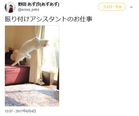 野田あず沙 チアリーダー ベイスターズ 性格 バチェラー バチェラー2 バチェラージャパン