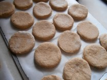 Put biscuits on a tray to freeze...