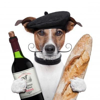 15179290-French-dog-wine-Basque-baguette