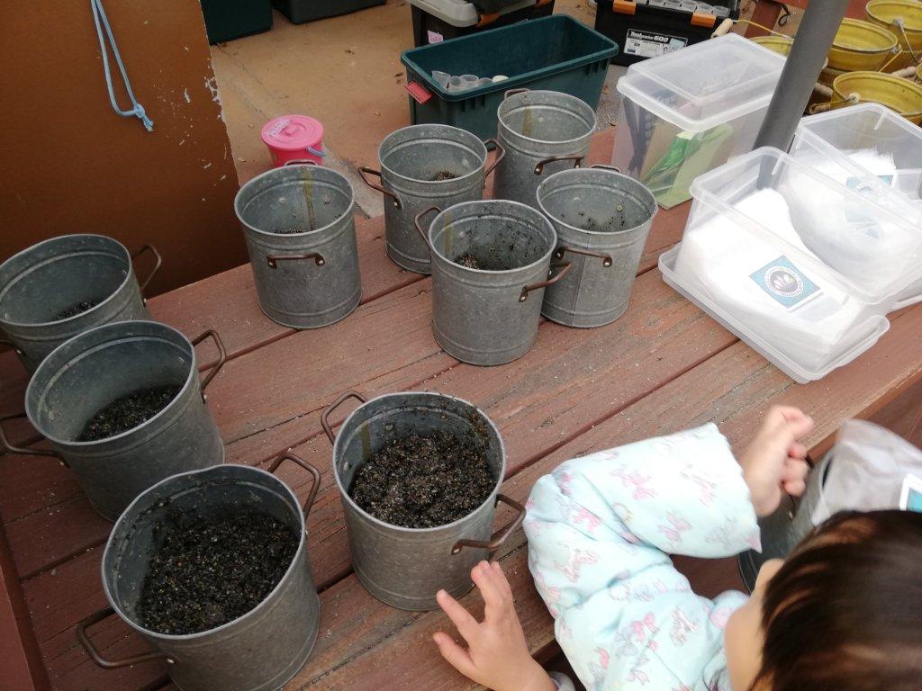 もりのゆうえんちのトレジャーコレクションで渡される化石や宝石の入ったバケツ
