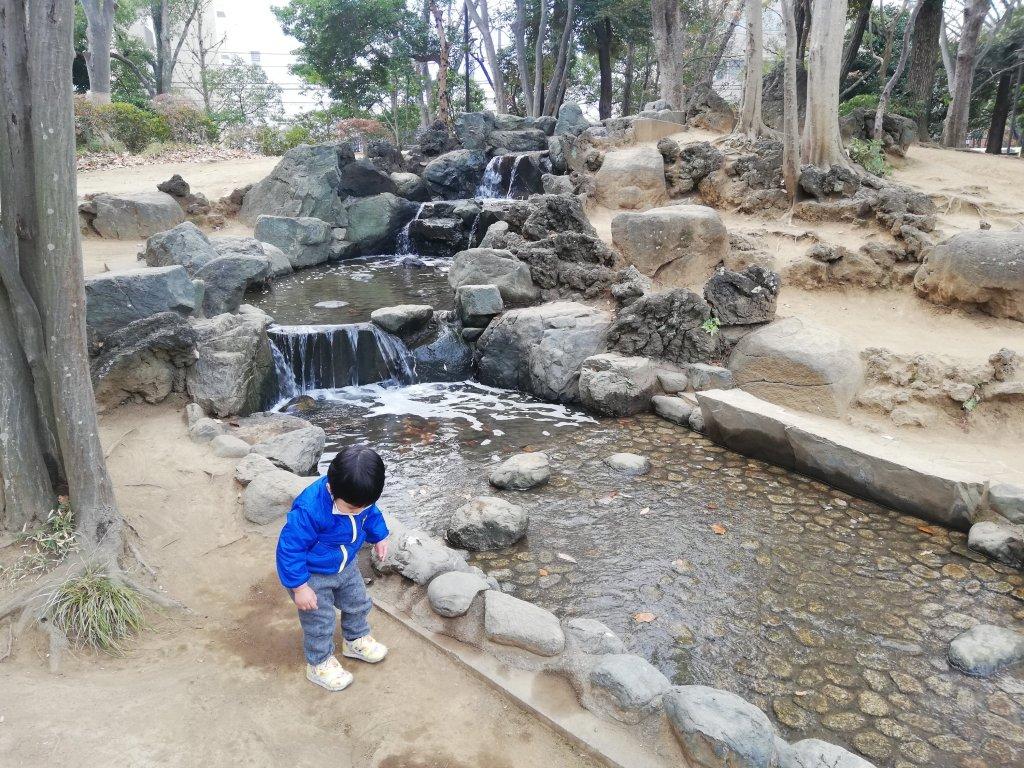 江戸川区の中央森林公園のじゃぶじゃぶ池