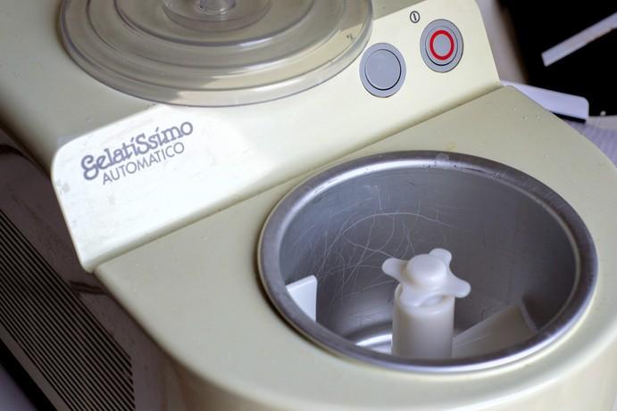 Come usare la gelatiera autorefrigerante  Gelato in casa