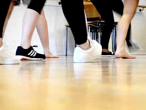 Dans og kulturudveksling