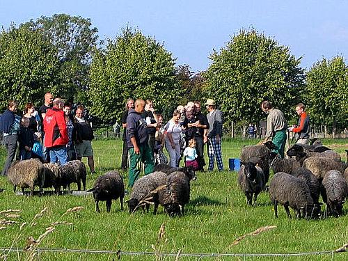 Høstmarked lørdag i Natursamarbejdet