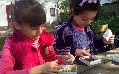 For børn: Lav en spirehave i Globus1