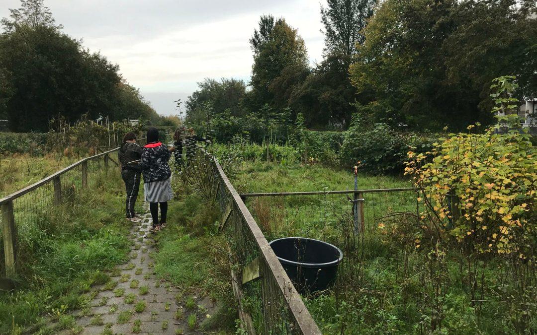 Kunstprojektet Aftryk: Lokale elever udforsker Gellerups baghave