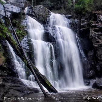Stephensons Falls 1 - Square Photography by Deb Gartland