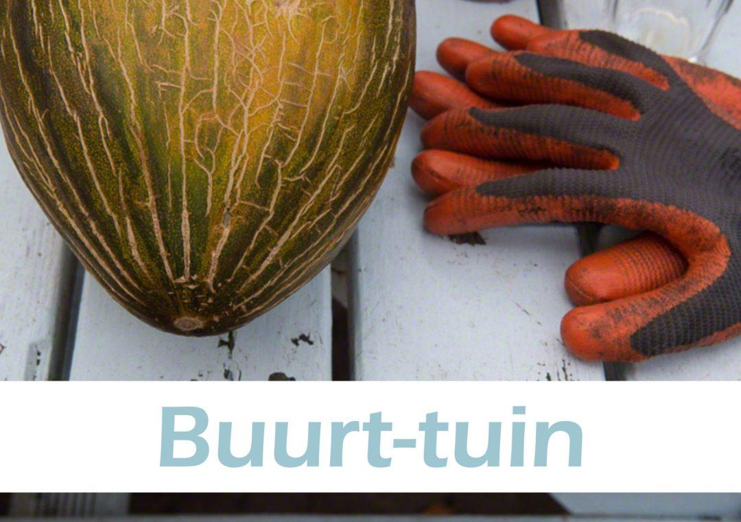 Buurt tuin - Wat we doen