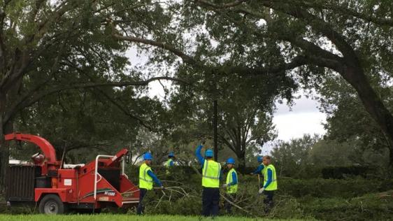 os-pictures-hurricane-irma-cleanup-in-orlando--003
