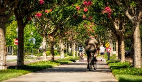 ruas-de-winter-garden-florida-06