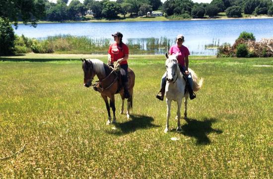 ride-horse-andar-de-cavalos