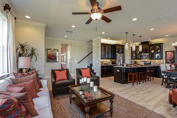 Tapestry-Maple-Craftsman-kissimmee (2)