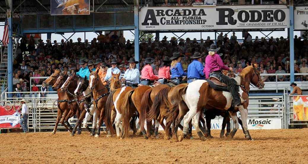 Arcadia-Rodeo-2016-FI