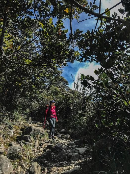 kinabalu_mountain_4