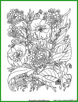 Malvorlage Blumen, Skizze Wildblumen — Bilder