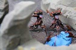 Epic Armageddon Dark Eldar Titans