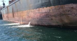 İzmit Körfezi'ni Kirleten Gemiye Ceza, Ballast Discharging