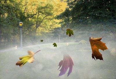 Autumnal Equinox
