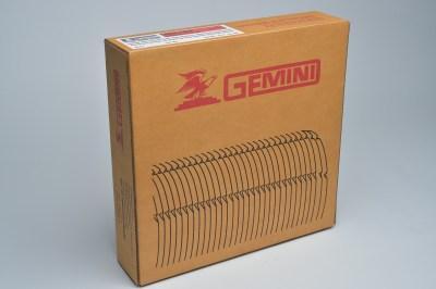 Gemini ARC 100