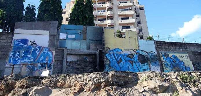 graffiti-on-road-being-widened-near-Santolan---6