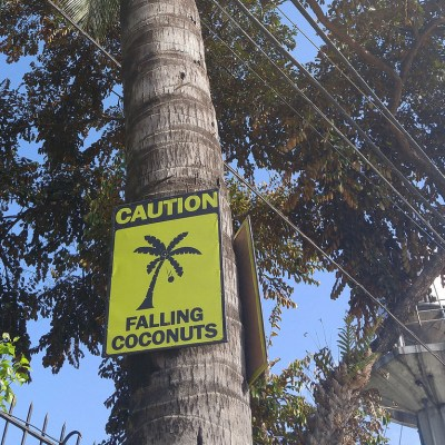 two signs warning of things falling from trees