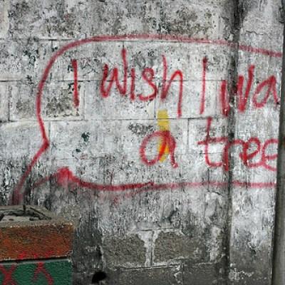 i wish i was a tree
