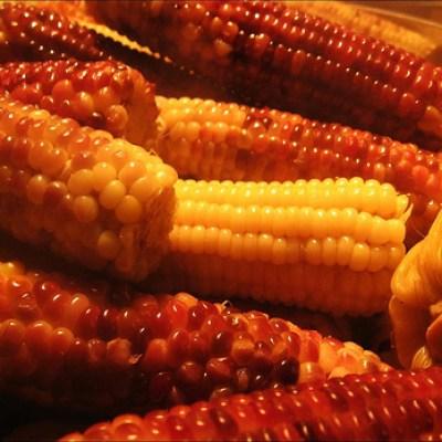 night market corn