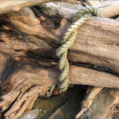 driftwood bound with rope