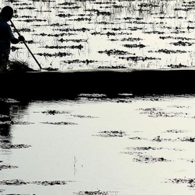 farmer at dusk