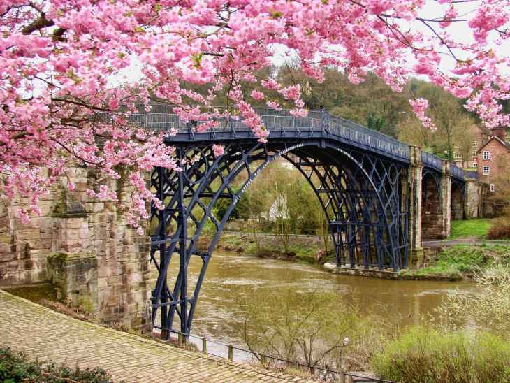 A bridge over a river with houses in the background, and held up with old bricks. Also a beautiful pink blossom tree in the left side of the bridge.