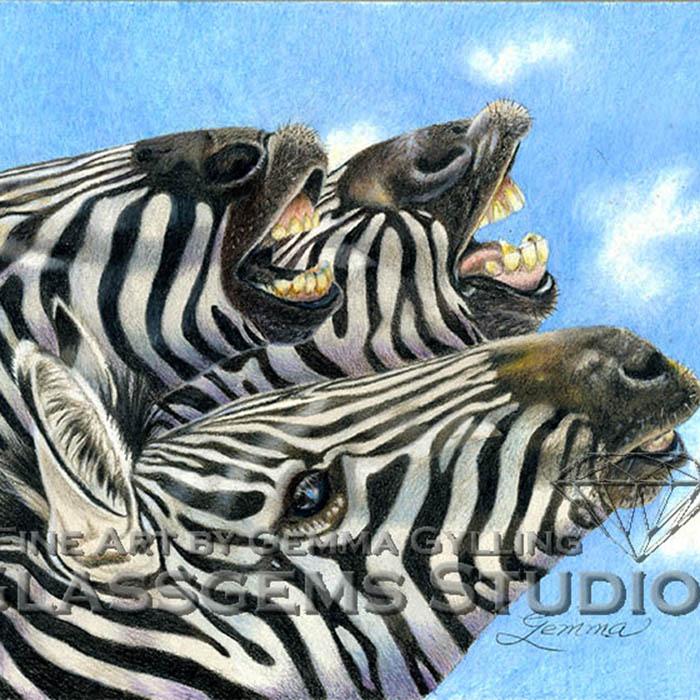 """""""LOL"""", Zebras colored pencil on art board, 8"""" x 10"""""""
