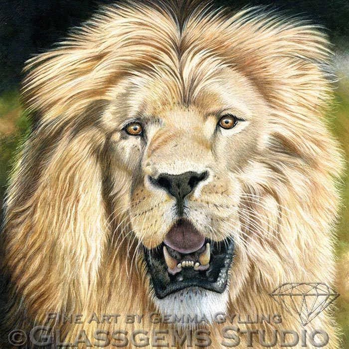 """""""Simba"""", Colored pencil on suede mat board, 18"""" x 14"""""""