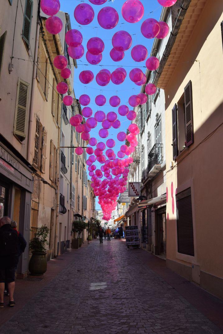 rose festival France