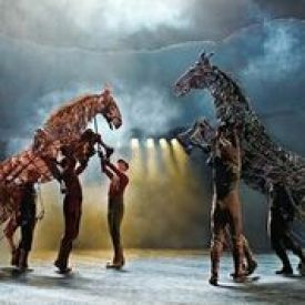 L5SNzAwh - Heart Tugging:War Horse Comes to Sunderland