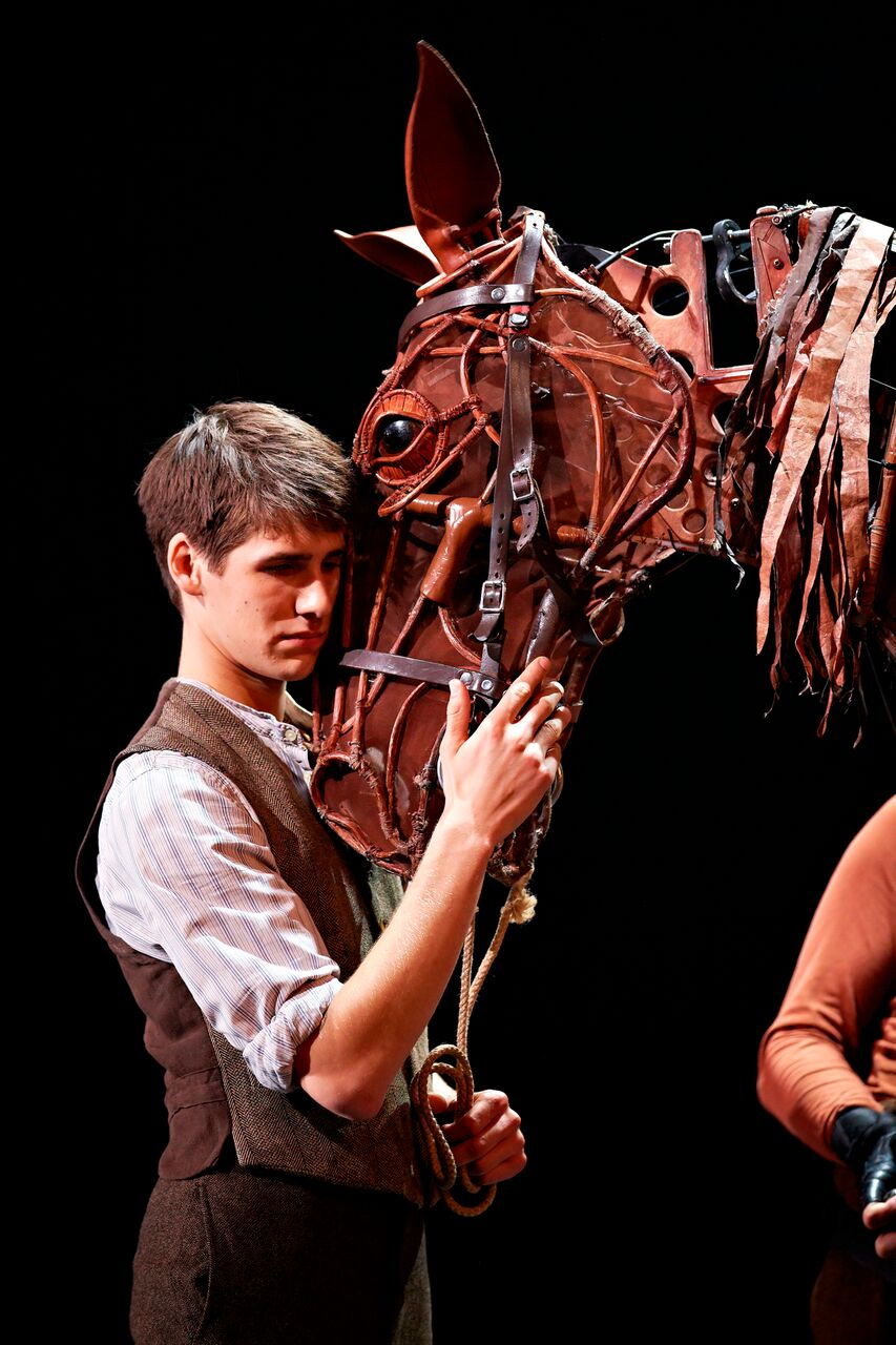 p6acxblX - Heart Tugging:War Horse Comes to Sunderland