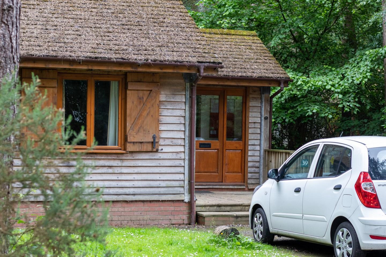 IMG 9622 1440x960 - Griffon Forest: Dog Friendly Holidays