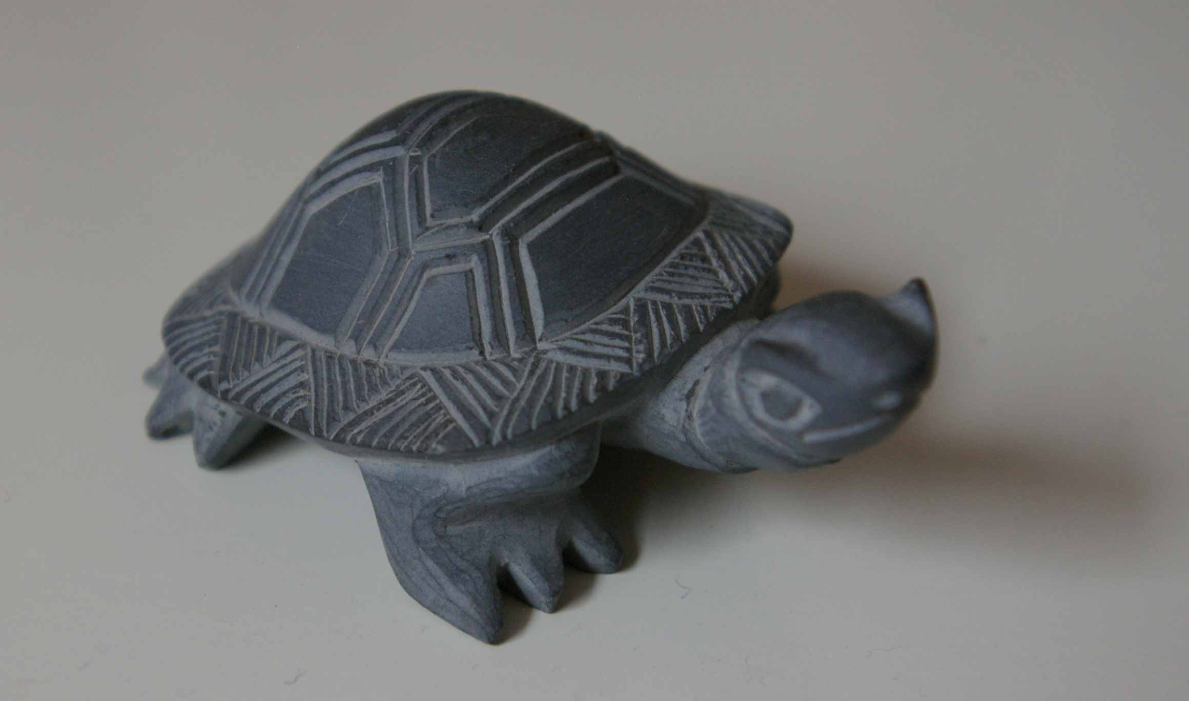 Turtles printable templates soap carving year of clean water