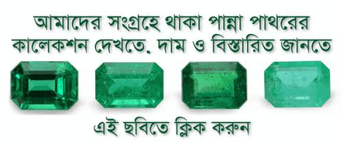 https://i0.wp.com/gemsbdonline.com/wp-content/uploads/2019/01/Emerald-Stone-Benefits-In-Bengali-পান্না-পাথরের-উপকারিতা.png?resize=500%2C215&ssl=1