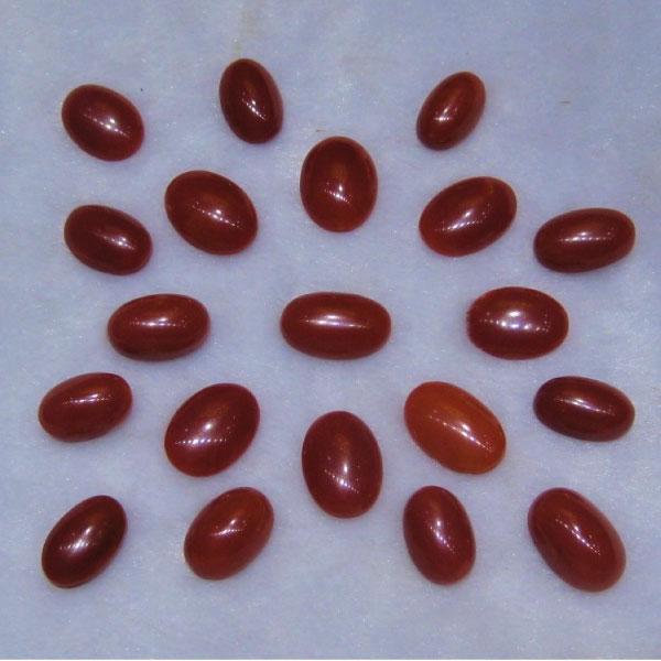 Natural Red Coral (রক্তপ্রবাল) - Gems Jewellers & Gems Stone