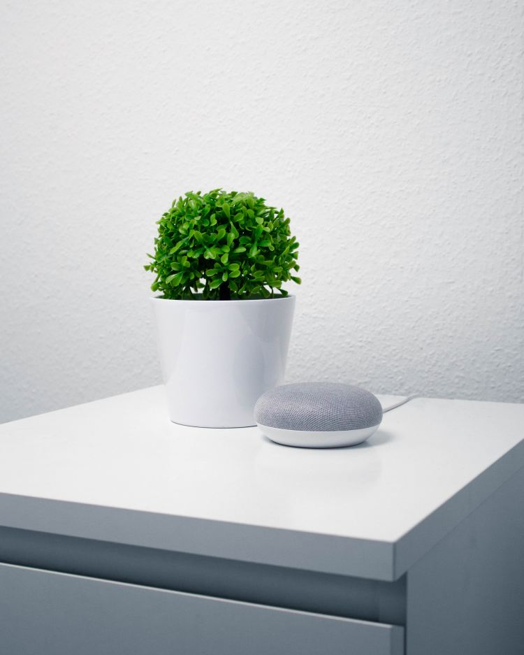 Image of white cupboard with a green plant and google home