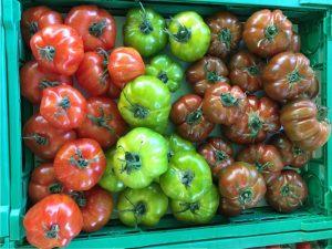 Tomaten grün, rot, braun