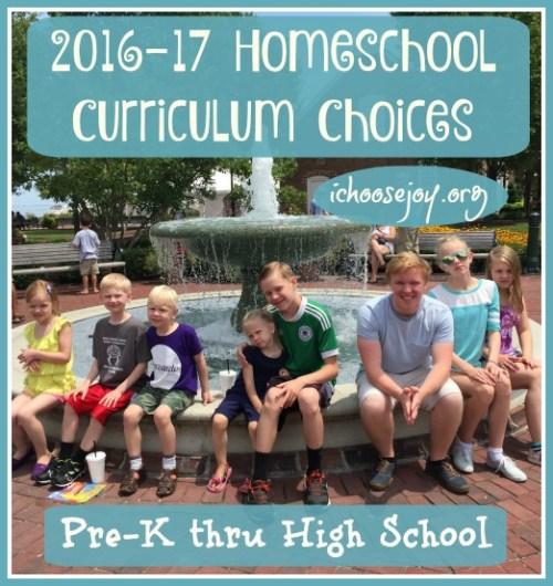 Homeschool Curriculum Choices 2016 - 2017 for 7 kids, preschool thru high school