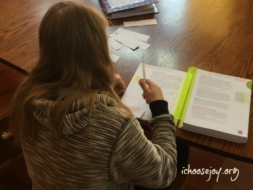 Writers in Residence™ All -In-One Student Text and Workbook and Answer Key, review with 3 kids, from I Choose Joy!