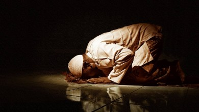 Photo of Teslimiyet Nedir?