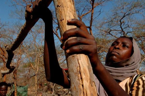 XSM004 ABYEI (SUDÁN), 21/1/2009.- Fotografía cedida por la Misión de las Naciones Unidas en Sudán (UNMIS) fechada el 21 de enero de 2009 y facilitada hoy, viernes 13 de marzo, que muestra a una mujer de la tribu de los dinka en Abyei, en la zona de Twic, en el sur de Sudán. La región de Twic es una de las más pobres de Sudán. La tribu dinka tiene una cabaña de unas 5.000 cabezas de ganado vacuno. EFE/Tim McKulka.