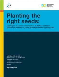 plantingtherightseeds