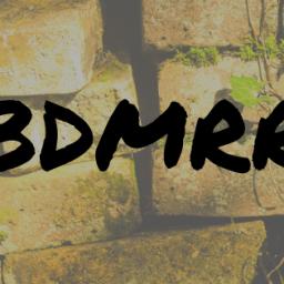 BDMRR Update