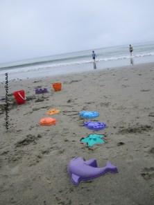 Drakes Beach - 2013-05 #1