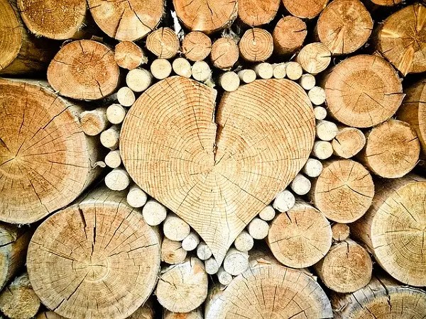 Wood in shape of heart
