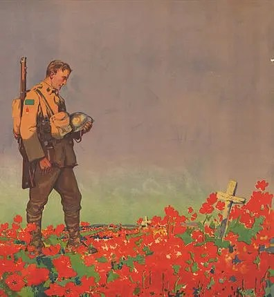 Solider at poppy field